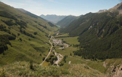 Artenvielfalt und Lebensräume in den Alpen – Welche Rolle spielt der Mensch?
